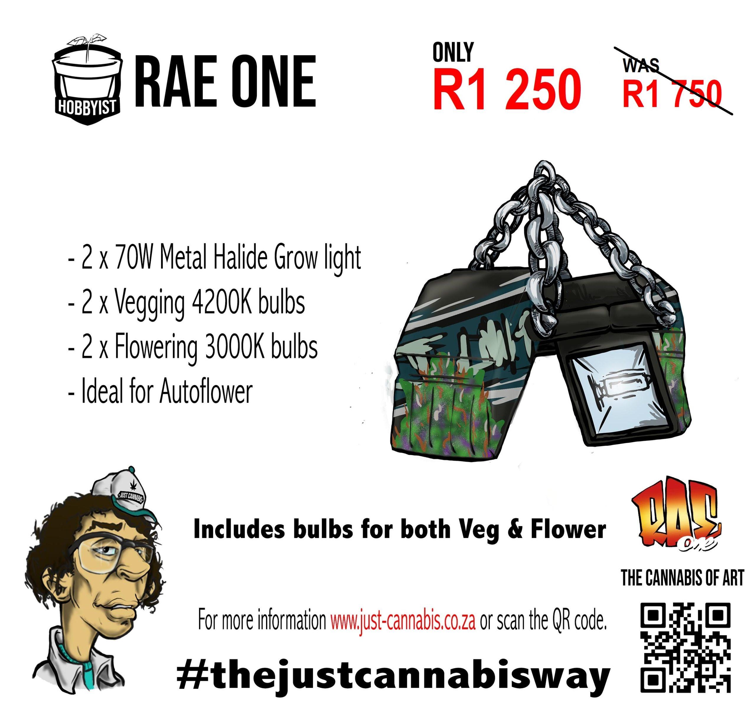 Rae One Grow Light